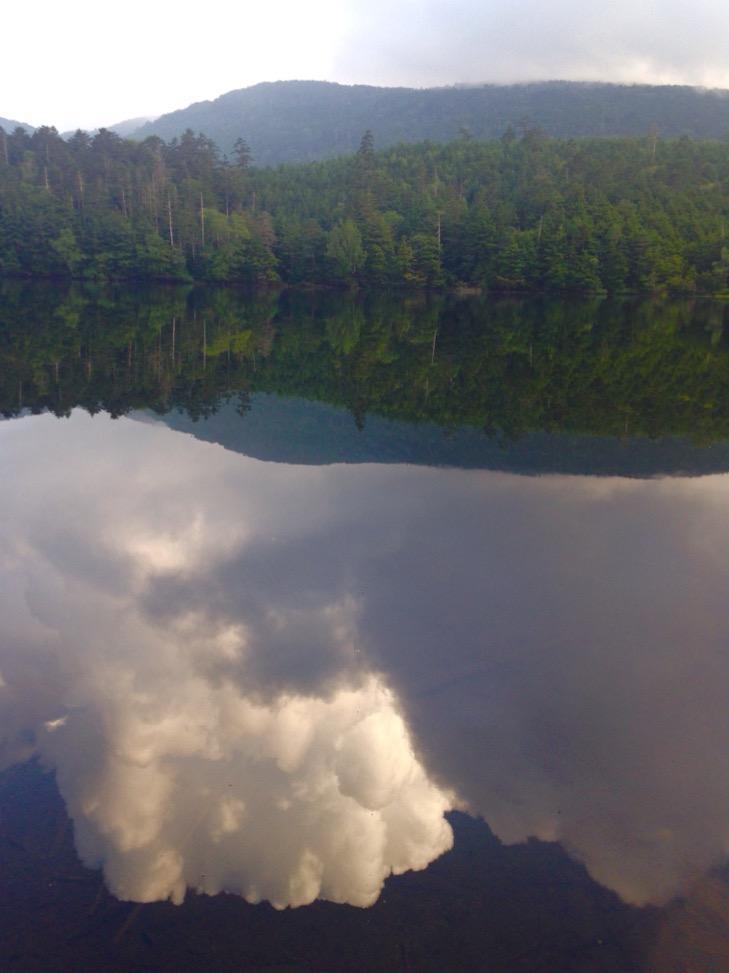 白駒池は水鏡。夏の雲を映します。