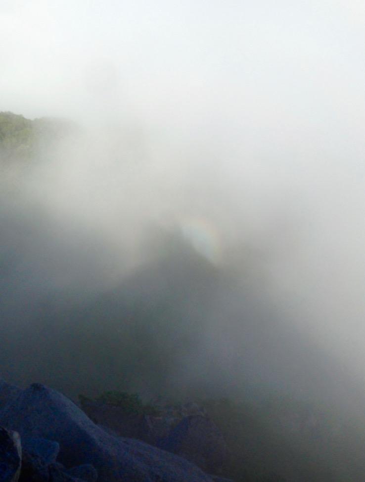 山頂はすっかり霧におおわれて・・・  山陰にうすぼんやりと丸い虹が現れました。これってブロッケン現象ですかい?  あっという間に消えてなくなりました。